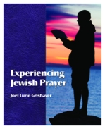 Experiencing Jewish Prayer cover